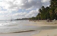 Partez autrement à la découverte de la Martinique