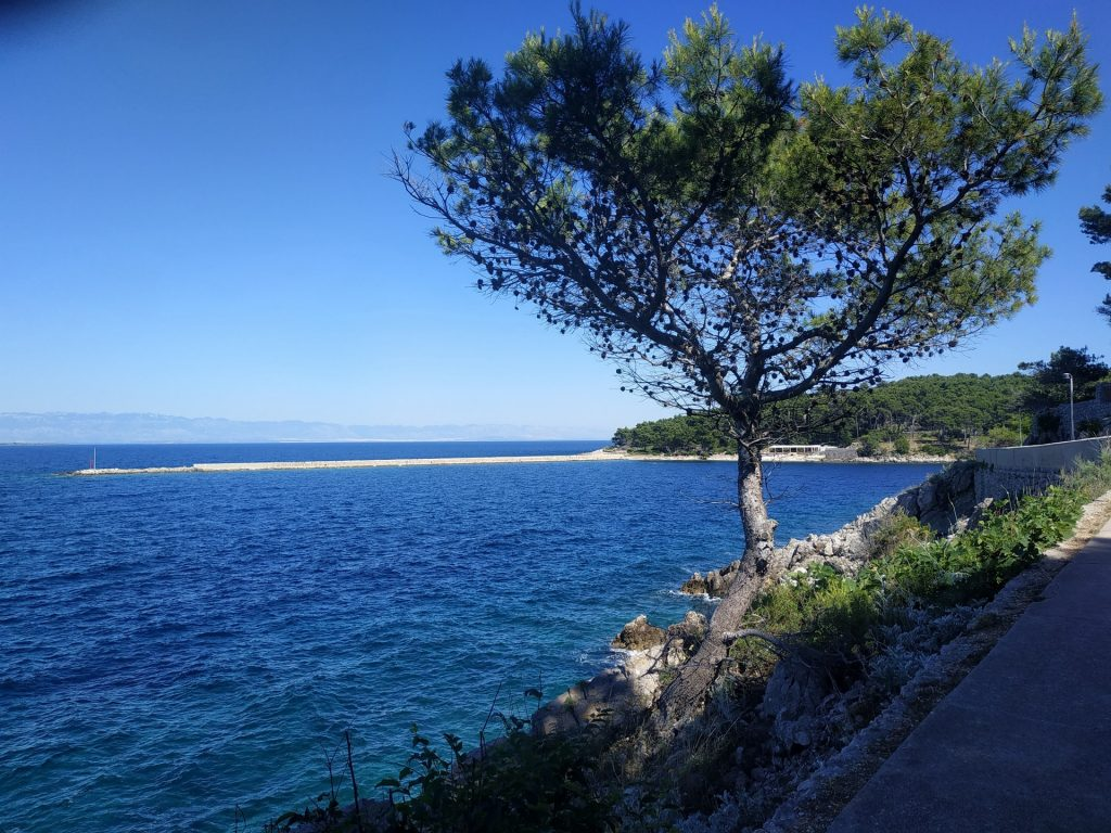 Bord de mer de l'île Lošinj