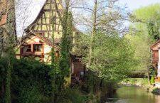 Découvrez la ville Sélestat en Alsace