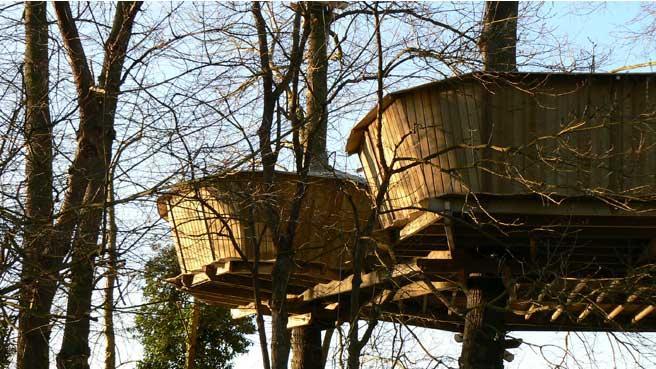 Des cabanes perchées dans les arbres, dans le morbihan en Bretagne