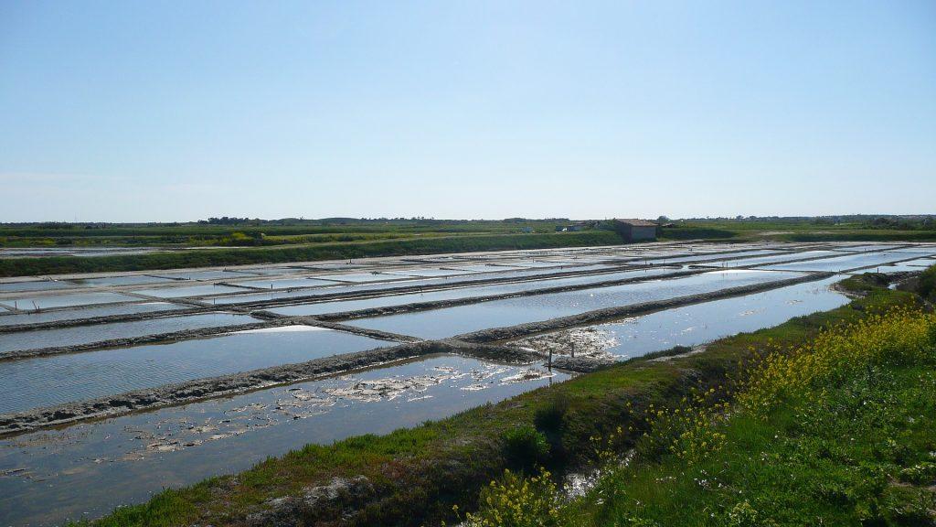 Marais salants proches de Loix sur l'île de Ré.