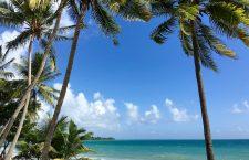 Profitez pleinement de la Martinique
