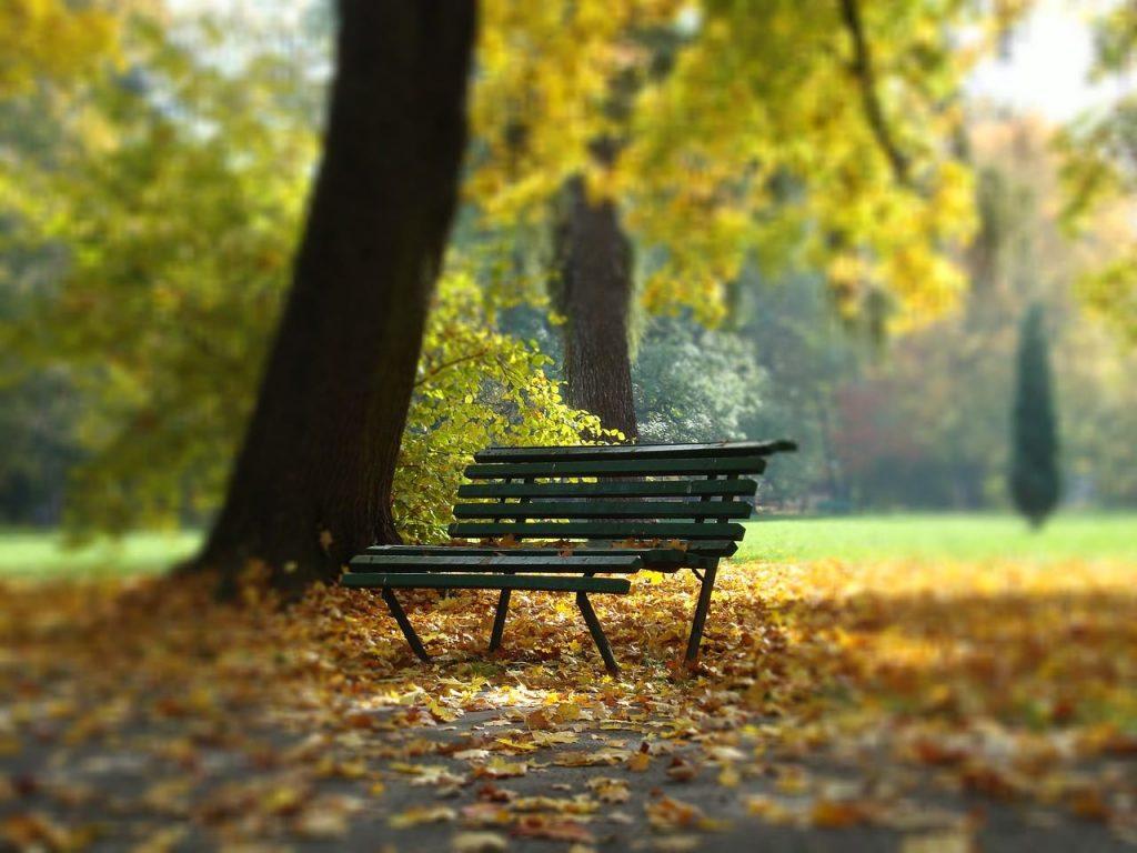 Banc pour une pause romantique dans le parc de Planty.